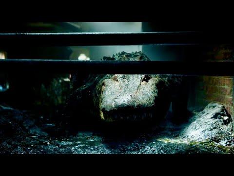 キターーーー!凶暴なワニが主人公を追い詰める!映画『クロール ―凶暴領域―』特別映像