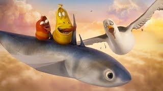 LARVA - FISH IN THE CLOUDS | Cartoons For Children | LARVA Official