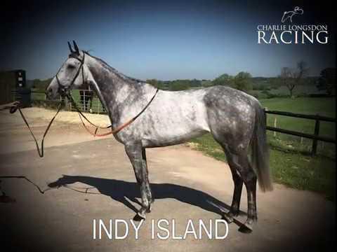 Charlie Longsdon Racing Club - Indy Island