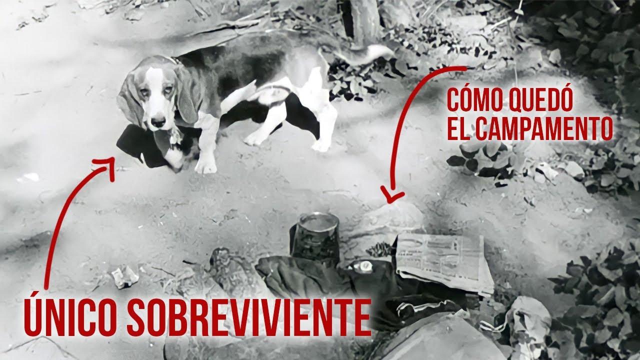 Download Fueron a acampar y desaparecieron. Sólo el perro Droopy sobrevivió. La historia de la familia COWDEN