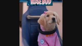 b-dawg loves rosebud.wmv
