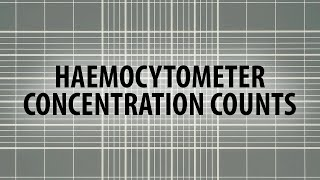 Calculate sperm concentration using a haemocytometer