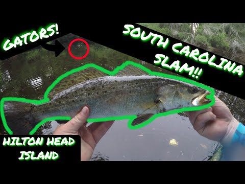 EPIC South Carolina --SLAM-- On Hilton Head Island (Close Encounter!) Lagoon Fishing!