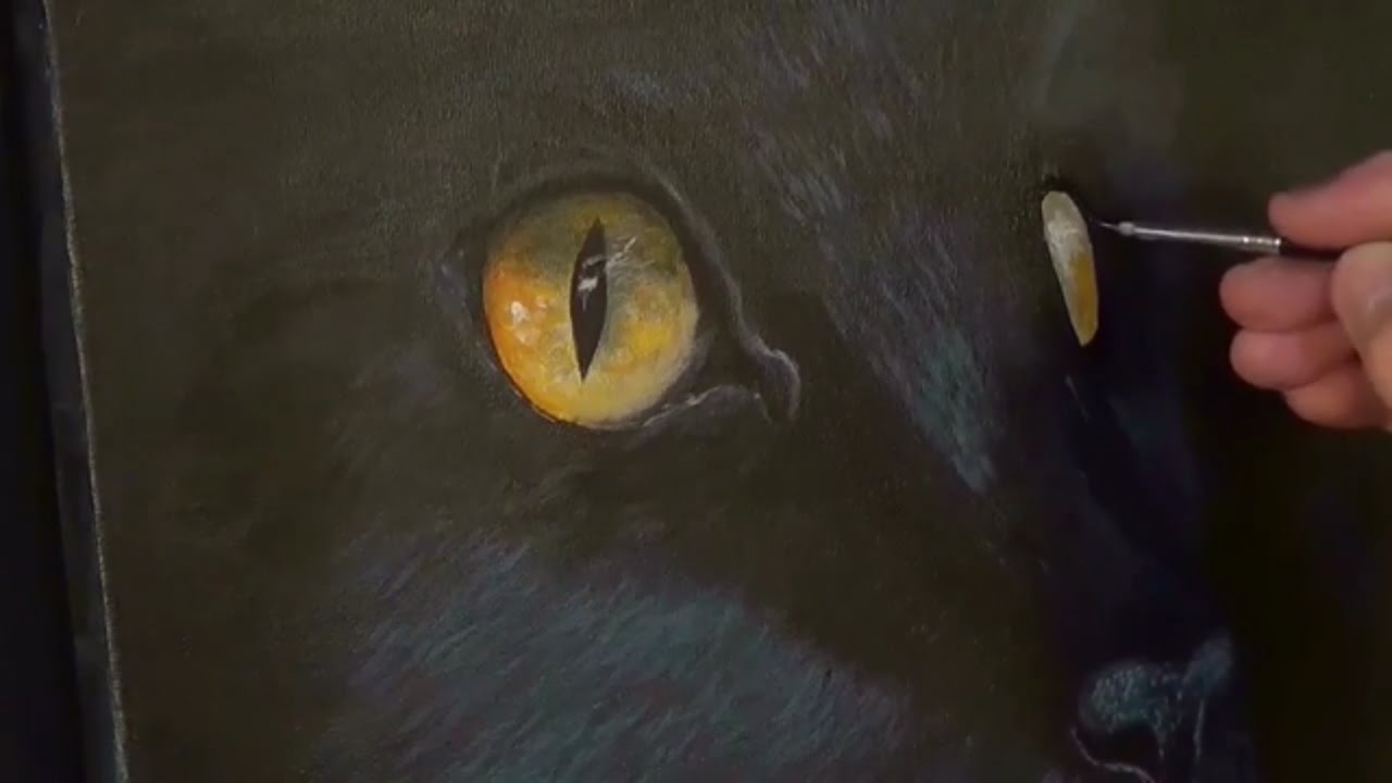 Youtube Painting A Black Cat In Acrylic