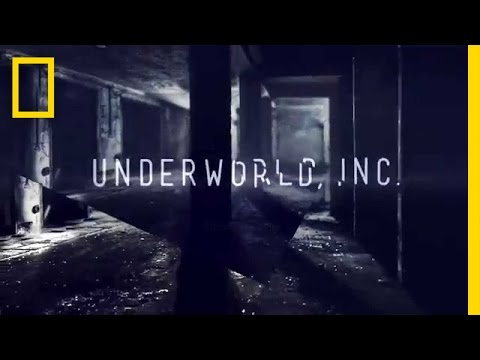 Underworld, Inc.   National Geographic