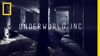 Underworld, Inc. | National Geographic