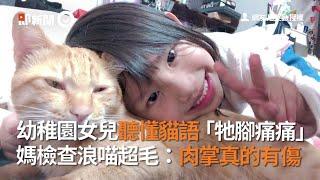 幼稚園女兒聽懂貓語「牠腳痛痛」浪喵肉掌真的有傷|寵物動物|流浪貓|看新聞