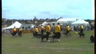 West Lancs Dog Display Team - Wirral Show 1994 Part 1 .mp4