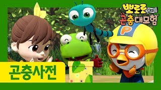 Pororo Bug Box | Ep3 Dragonfly | Pororo Bugs Adventure | Bugs movie for kids