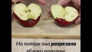Урок на всю жизнь! Учительница показала детям яблоко и сказала им оскорбить его...