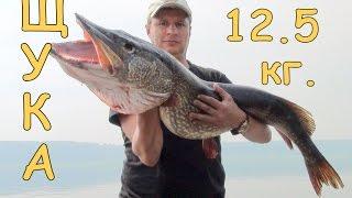 Рыбацкие рассветы Ангары и трофейная рыбалка