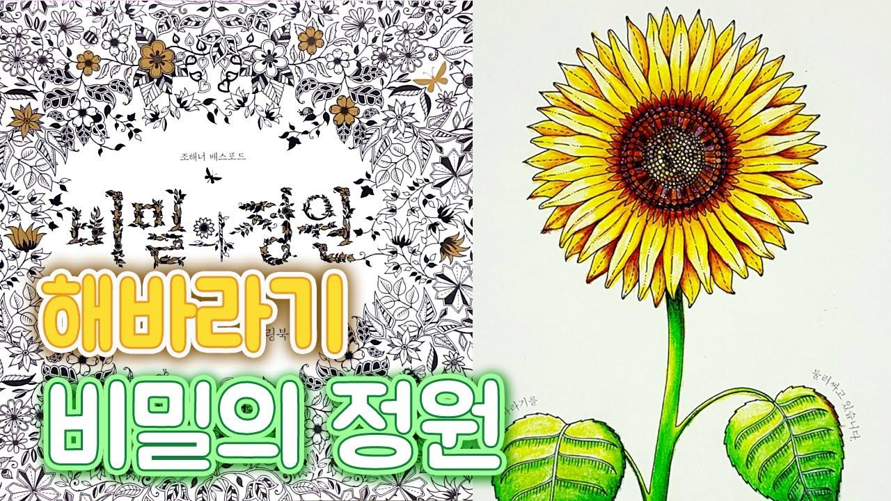 Secret Garden Coloring Book How To