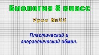 Биология 8 класс (Урок№22 - Пластический и энергетический обмен.)