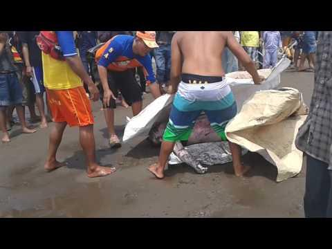 1 Januari 2016 Tragedi Pantai pangandaran