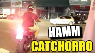 HAMMM CATCHORRO 8