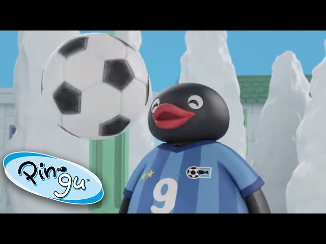 Pingu Plays Football! @Pingu - Official Channel  | Pingu in the City | Cartoons for Kids