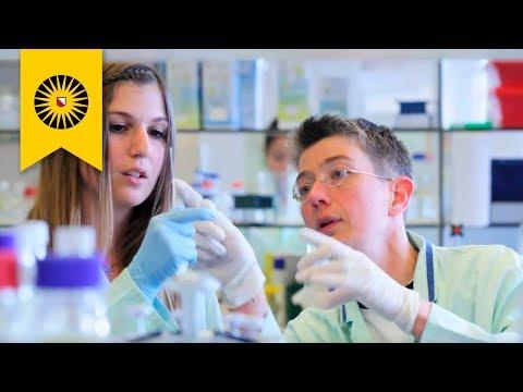 Utrecht University: Discover A Better Future