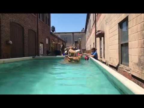 Training | Dog swimming aggressive unadoptable dog | Solid K9 Training Dog Training