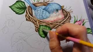 Folhas de rosa – Vídeo 1- Pintura em tecido