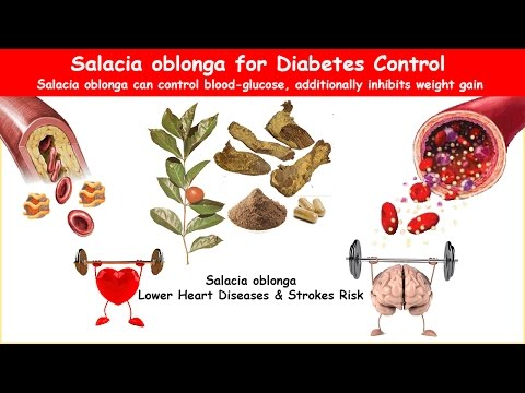 Salacia Oblonga Diabetes Herb Lower BS & Cholesterol!