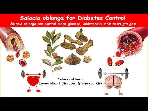 Salacia Oblonga Diabetes Herb Lower BS & Cholesterol!