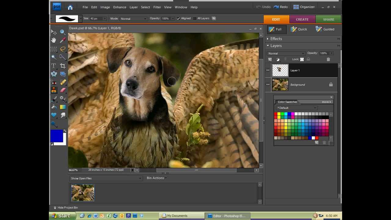 photoshop projects Find answers to frequently asked questions about the project photoshop streaming is project photoshop streaming an indication that adobe will be virtualizing the.