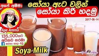 ★ ගෙදරදී සෝයා කිරි හදන හැටි Homemade Soya Milk from Soybeans by Apé Amma