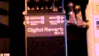 Boss RV-5 Demo