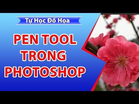 Pen tool, BT sử dụng pen trong photoshop, cắt hoa đào bằng pen