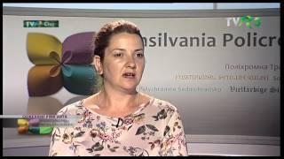 Transilvania Policromă, TVR 3_TVR Cluj, 29 mai 2017 - MATBUC - Conexiuni prin artă
