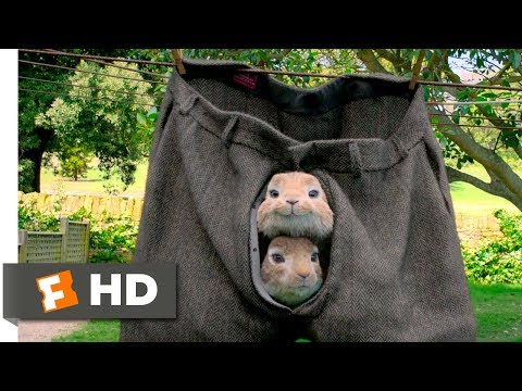 Peter Rabbit (2018) - No Guts, No Glory Scene (3/10) | Movieclips