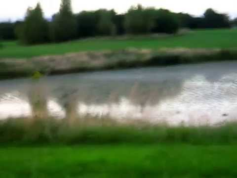 Tymon Park Lake Templeogue Dublin Ireland 6W Summer Verano.