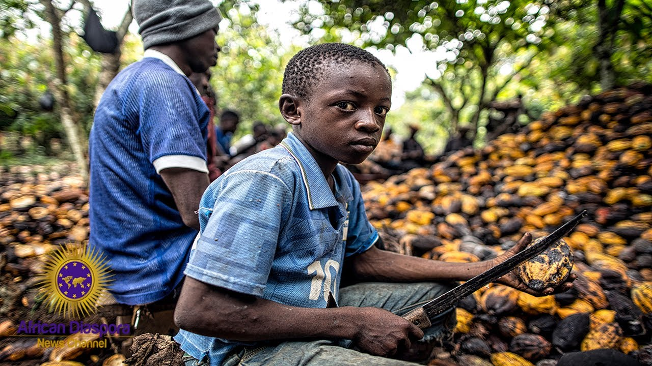 White Owned Chocolate Companies Use Child Slavery For Major Profits