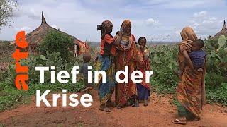Äthiopien: Grüner Hunger   ARTE Reportage