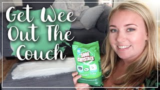 GET URINE SMELLS OUT OF FABRIC - WEE ON COUCH - PET ODOR AND TOILET TRAINING - LOTTE ROACH