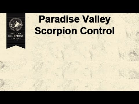 Paradise Valley Scorpion Sealing Services | Seal Out Scorpions