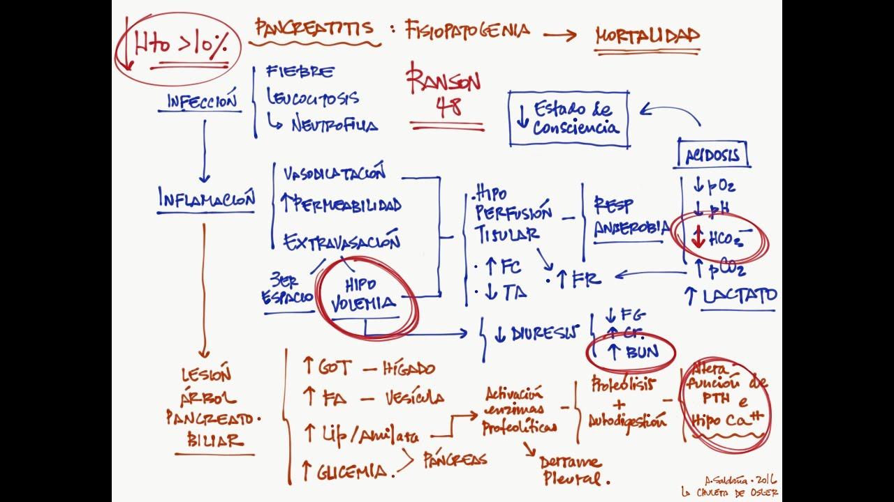evaluaciones de diabetes forschergruppe