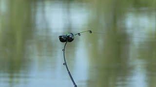 Наконец то Лещ Пошёл. Рыбалка. Ловля леща и карася на фидер и донки