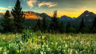 Berlioz - Le carnaval romain, Overture, Op 9 - Abbado