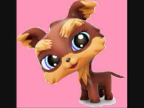 Lets Freak With Yorkie From Lps Youtube