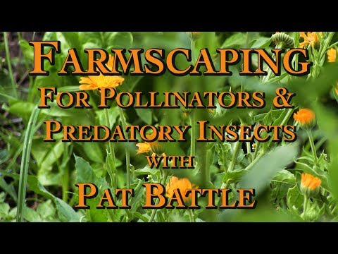 Farmscaping for Pollinators & Predatory Insects