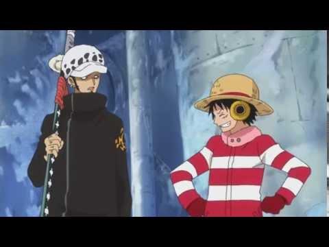 Luffy trust Law!
