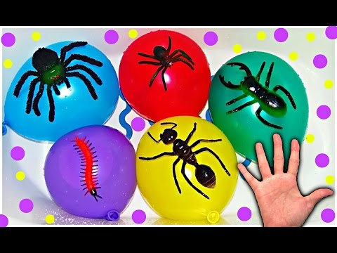 Mega Wet Balloons with Insects for Learning Colors - Finger Nursery Rhymes For Babies