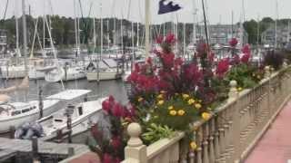 Sailing Emporium Boatyard Work