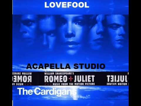 THE CARDIGANS ACAPELLA STUDIO   LOVEFOOL