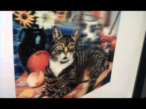 Joel Shepard's amazing cat hologram.