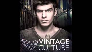 Vintage Culture, Dazzo (FEAT. ASHIBAH) Too Slow