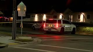 Woman killed near Pinellas Park City Hall | Digital Short
