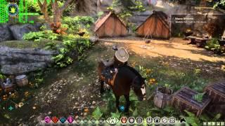 Dragon Age Inquisition (DAI) - EVGA GTX 980Ti SC - 1440p Ultra Gameplay Performance