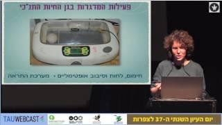 פרויקט הדגרת ביצי נשרים גידול גוזלים וטיפול בנשרים מיובאים לשחרור בטבע בגן החיות התנ כי בירושלים